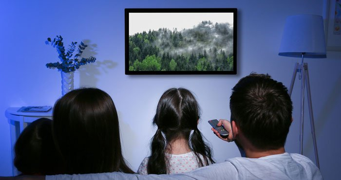TV shows on the web